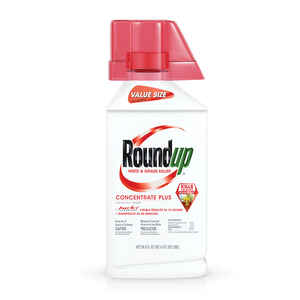 Roundup  Concentrate  Weed and Grass Killer  36.8 oz.