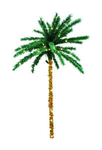Sienna  Clear  Prelit Tropical  200 lights Palm Tree  Brown/Green  1 pk