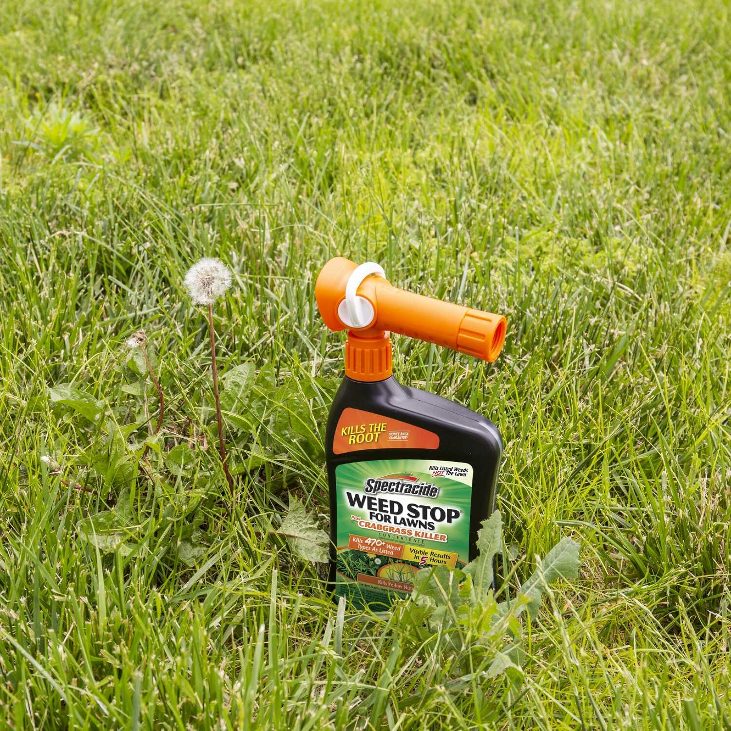 Spectracide  Weed Stop  Weed and Crabgrass Killer  RTS Hose-End Concentrate  32 oz.