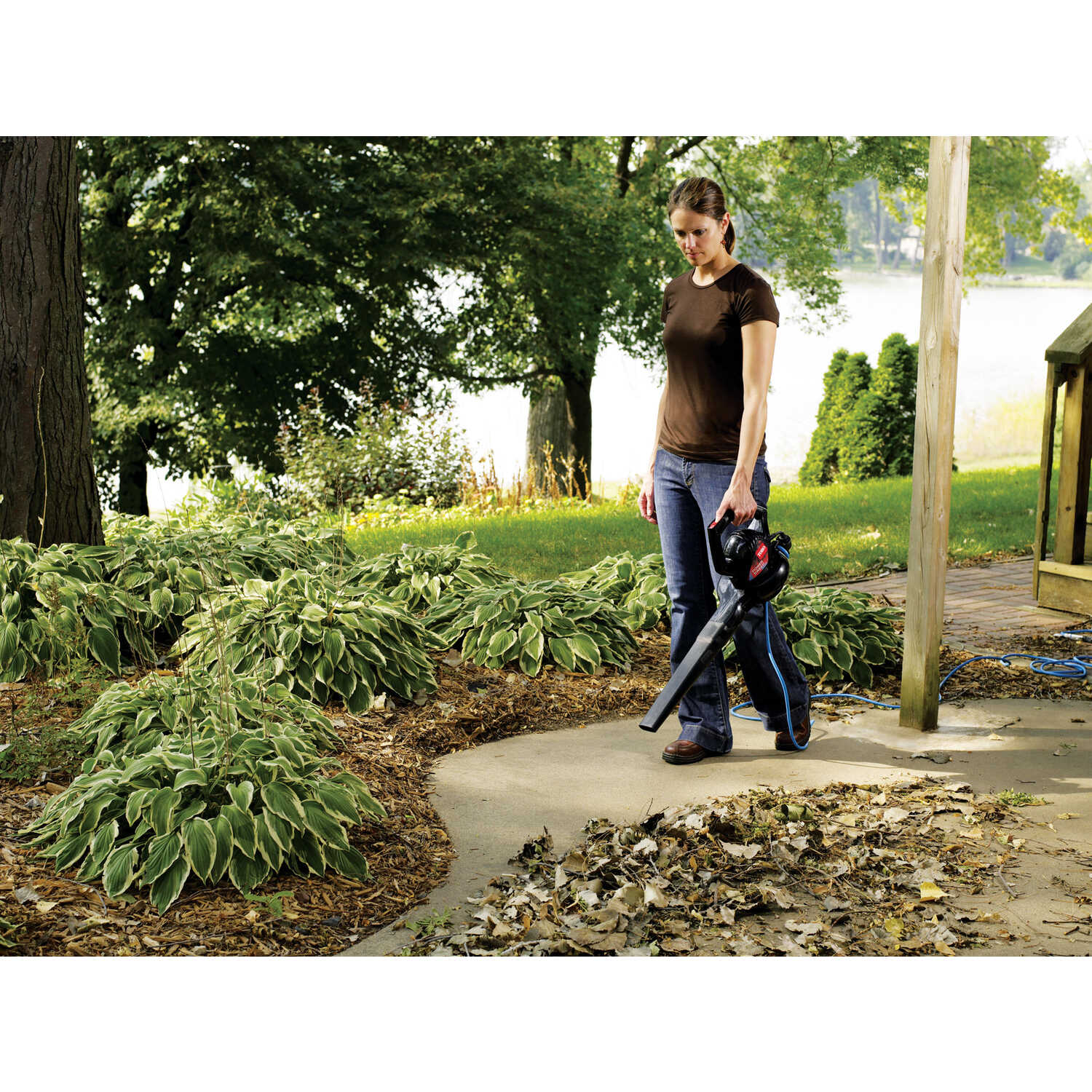 Toro  Electric  Handheld  Leaf Blower