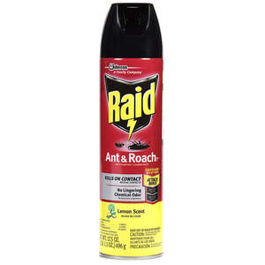 Raid Ant And Roach Killer Roaches Spray 17.5 oz.