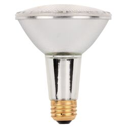 Westinghouse  53 watt PAR30  Long Neck  Halogen Bulb  920 lumens Warm White  1 pk