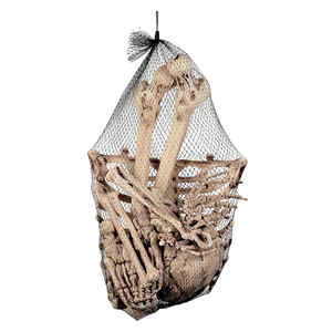 Seasons  Bags of Bones  Halloween Decoration  6-1/4 in. W x 17-1/2 in. H x 11-1/4 in. L 13 pc.