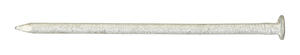 Ace  6D  2 in. L Box  Hot-Dipped Galvanized  Steel  Nail  Thin Shank  Flat  1 lb.
