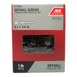 Ace  No. 6   x 1-1/4 in. L Phillips  Drywall Screws  1 lb. 283 pk