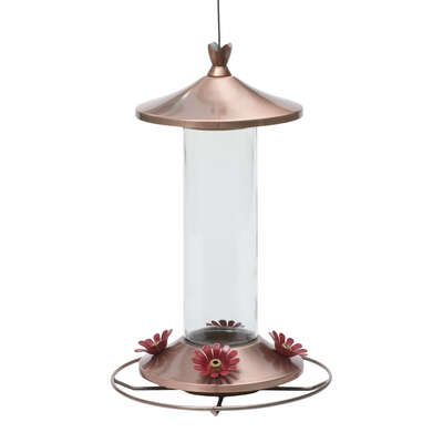 Perky-Pet  Hummingbird  12 oz. Copper/Glass  Nectar Feeder  4 ports