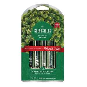 Scentsicles  Wreath  Winter Fir Scent Fragrance Sticks  12 oz. Solid