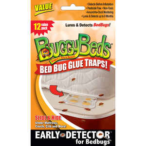 Buggy Beds  Glue Trap  12 pk