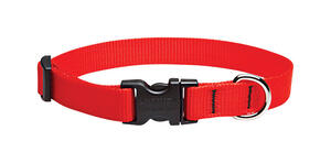 Lupine Pet  Basic Solids  Red  Red  Nylon  Dog  Adjustable Collar