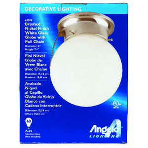 Westinghouse  6 in. W x 6.5 in. L Ceiling Light