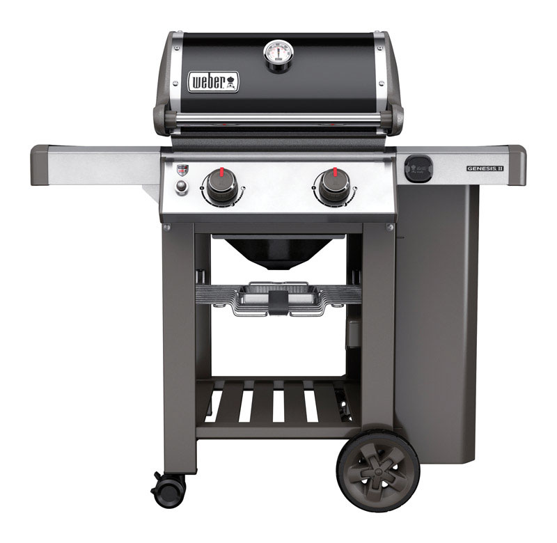 d5c16852 a07e 4665 bf2a 33a8dd4ccb96 gas grills & natural gas grills at ace hardware