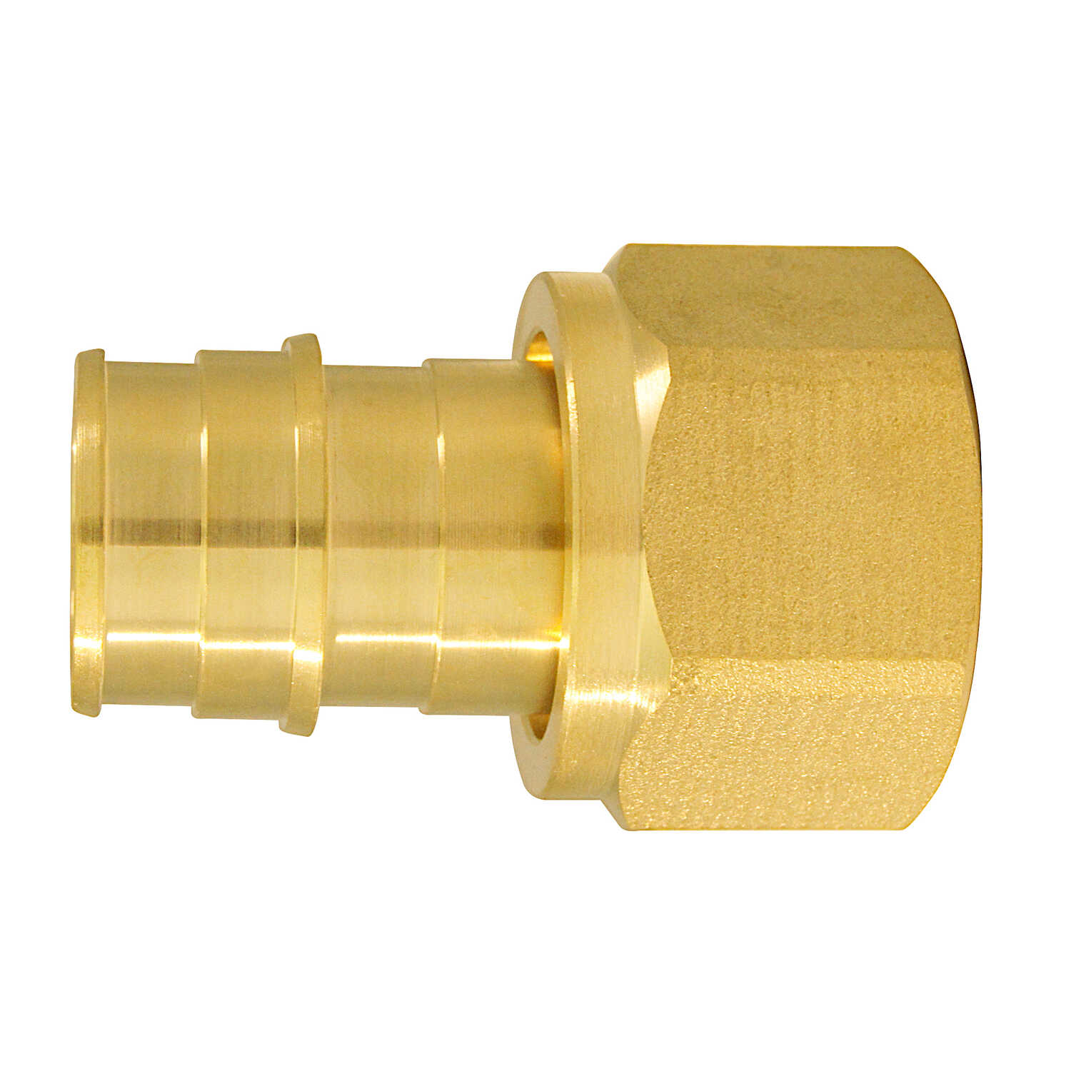 Apollo  Expansion PEX / Pex A  PEX   x 3/4 in. Dia. FPT  3/4 in. 1 pk Female Adapter