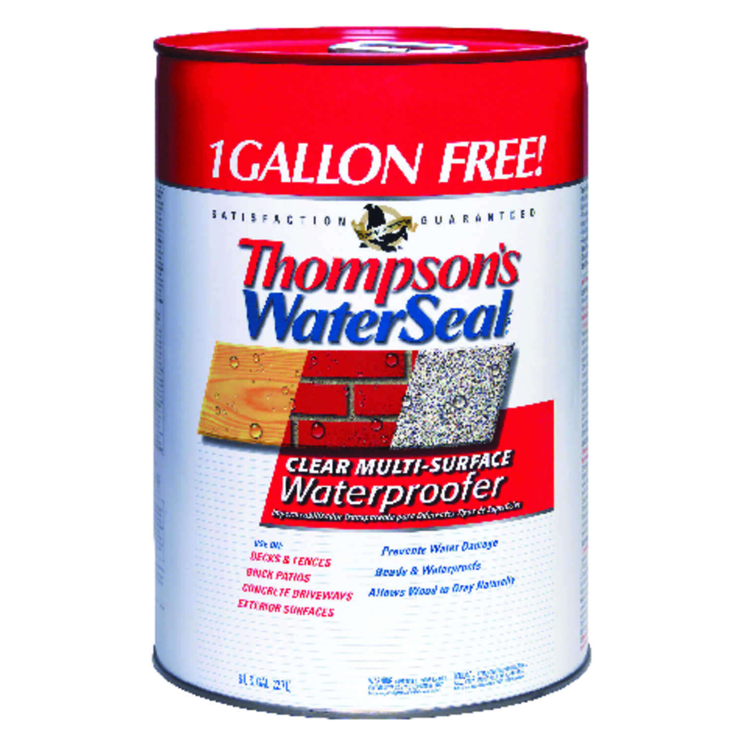 Thompson's Waterseal  Clear  Water-Based  Multi-Surface Waterproofer  6 gal. Smooth
