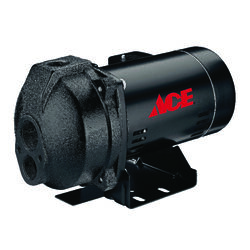 Ace  1 hp 13.5 gph Cast Iron  Convertible Jet Pump