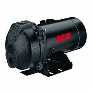 Ace  Cast Iron  Convertible Jet Pump  1 hp 13.5  230 volts