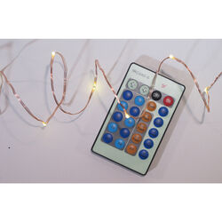 Celebrations  Micro/5mm  Clear/Warm White  100 count String  Christmas Lights  33 ft.