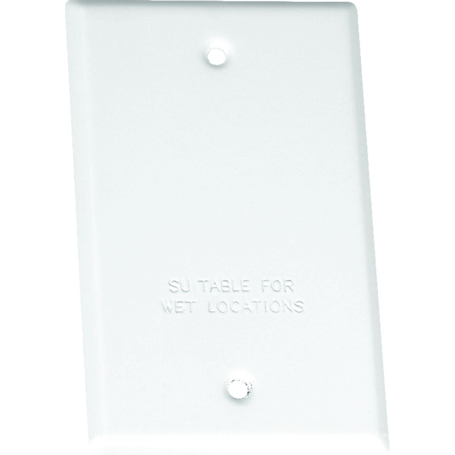 Sigma  Rectangle  Steel  1 gang Blank Box Cover  For Wet Locations
