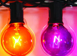 Celebrations  Purple and Orange Globe Lights  Halloween Decor