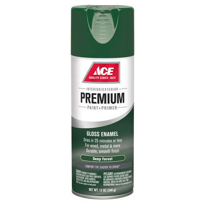 Ace  Premium  Gloss  Deep Forest  Paint + Primer Spray Paint  12 oz.