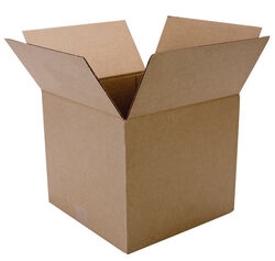 Duck  10 in. H x 12 in. W x 12 in. L Cardboard  Corrgugated Box  1 pk