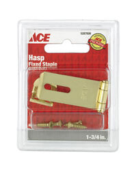 Ace Bright Brass 1-3/4 in. L Fixed Staple Safety Hasp