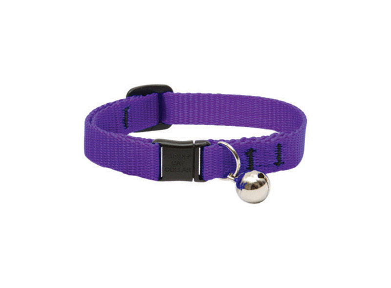 Lupine Pet  Basic Solids  Purple  Nylon  Cat  Collar