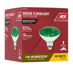 Ace  100 watt PAR38  Floodlight  Incandescent Bulb  E26 (Medium)  Green  1 pk