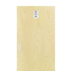 Midwest Products 12 in. W x 24 in. L x 1/8 in. Plywood