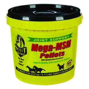 Mega MSM  Solid  Joint Care  For Horse 80 oz.