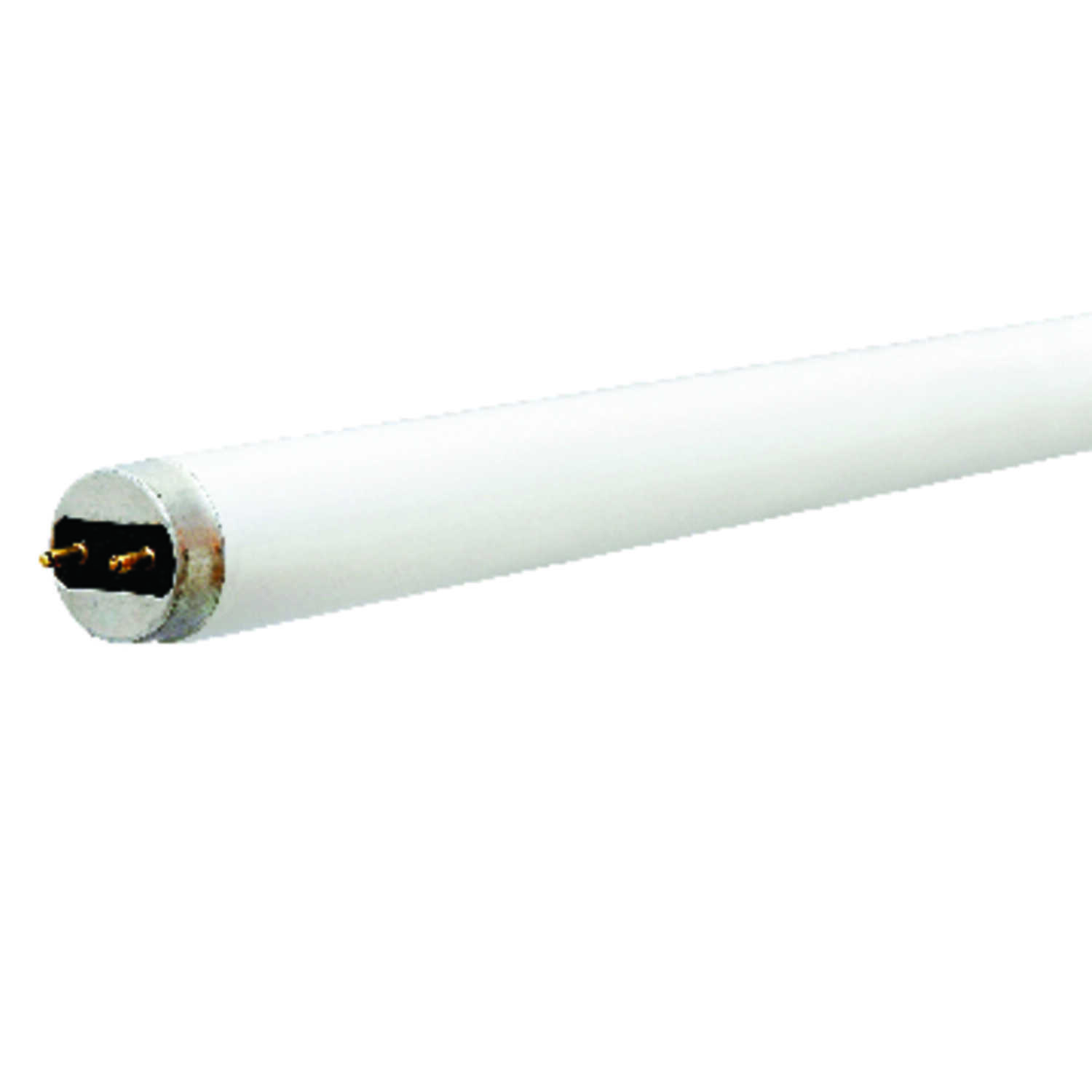 Ace  32 watts T8  48 in. Cool White  Fluorescent Bulb  2900 lumens Linear  2 pk