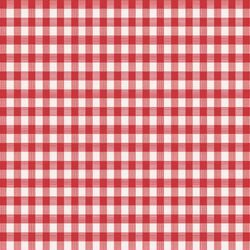 Magic Cover Red/White Checkered Vinyl Disposable Tablecloth 70 in. 52 in.