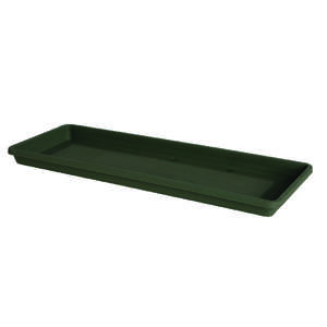 Bloem  Terrabox  1.2 in. H x 24 in. W Thyme Green  Resin  Tray