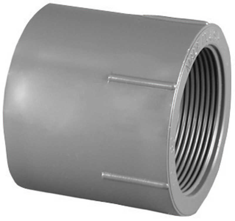Charlotte Pipe  Schedule 80  1-1/2 in. Slip   x 1-1/2 in. Dia. FPT  PVC  Pipe Adapter
