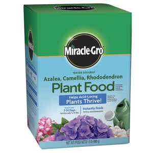 Miracle-Gro  Azalea, Camellia, Rhododendron  Powder  Plant Food  1.5 lb.