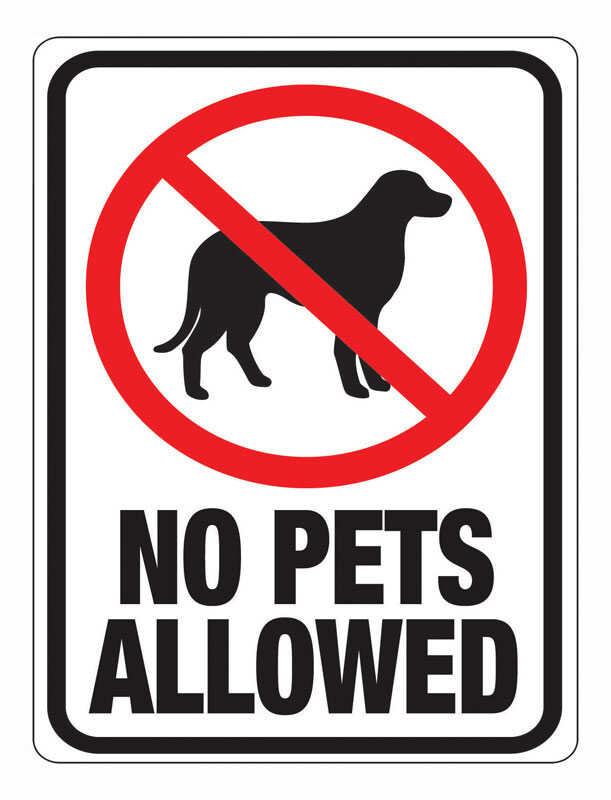 Hy-Ko  English  No Pets Allowed  Sign  Plastic  12 in. H x 9 in. W