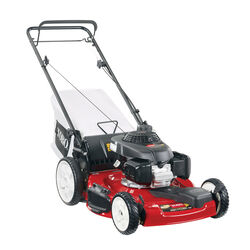 Toro Recycler 20379 22 in. 160 cc Gas Self-Propelled Lawn Mower