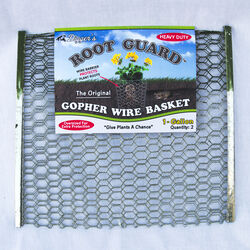 Diggers  Root Guard  13.5 in. H x 13 in. W x 0.3 in. D Silver  Coated Wire  Gopher Wire Basket