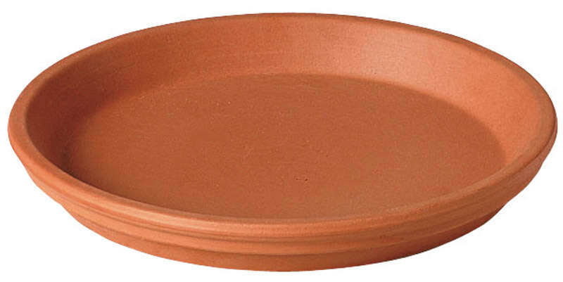 Deroma 0.6 in. H x 4 in. Dia. Clay Traditional Plant Saucer Terracotta