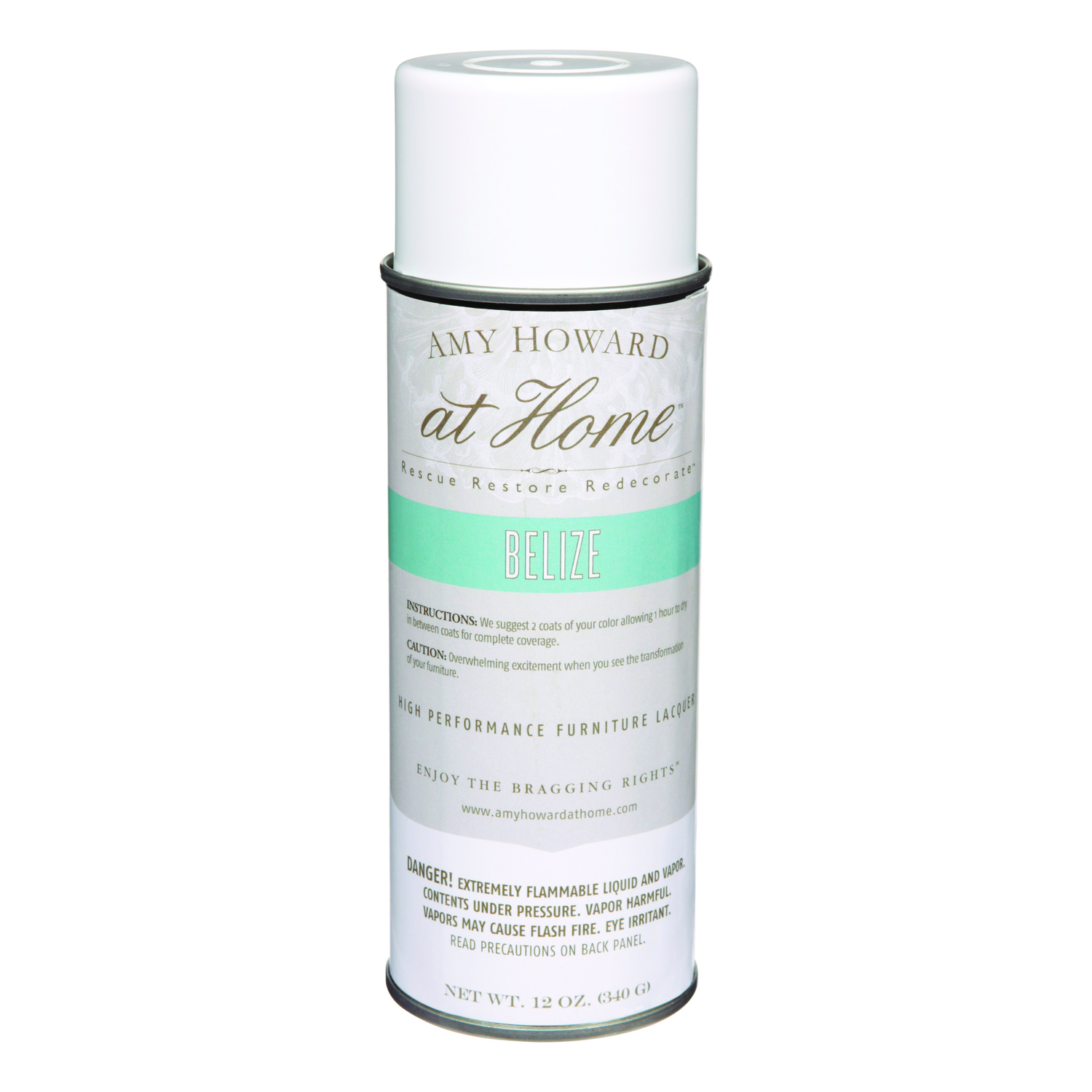Amy Howard at Home  Gloss  Belize  High Performance Furniture Lacquer Spray  12 oz.
