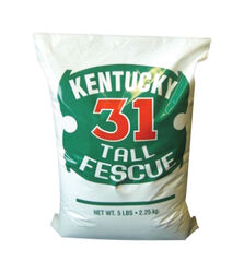 Barenbrug Kentucky 31 Tall Fescue Sun/Shade Grass Seed 5 lb.