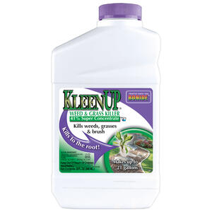 Bonide  KleenUp  Weed and Grass Killer  Concentrate  32 oz.