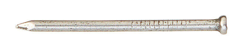 Ace  6D  2 in. L Finishing  Steel  Nail  Countersunk  Smooth Shank  264  1 lb.