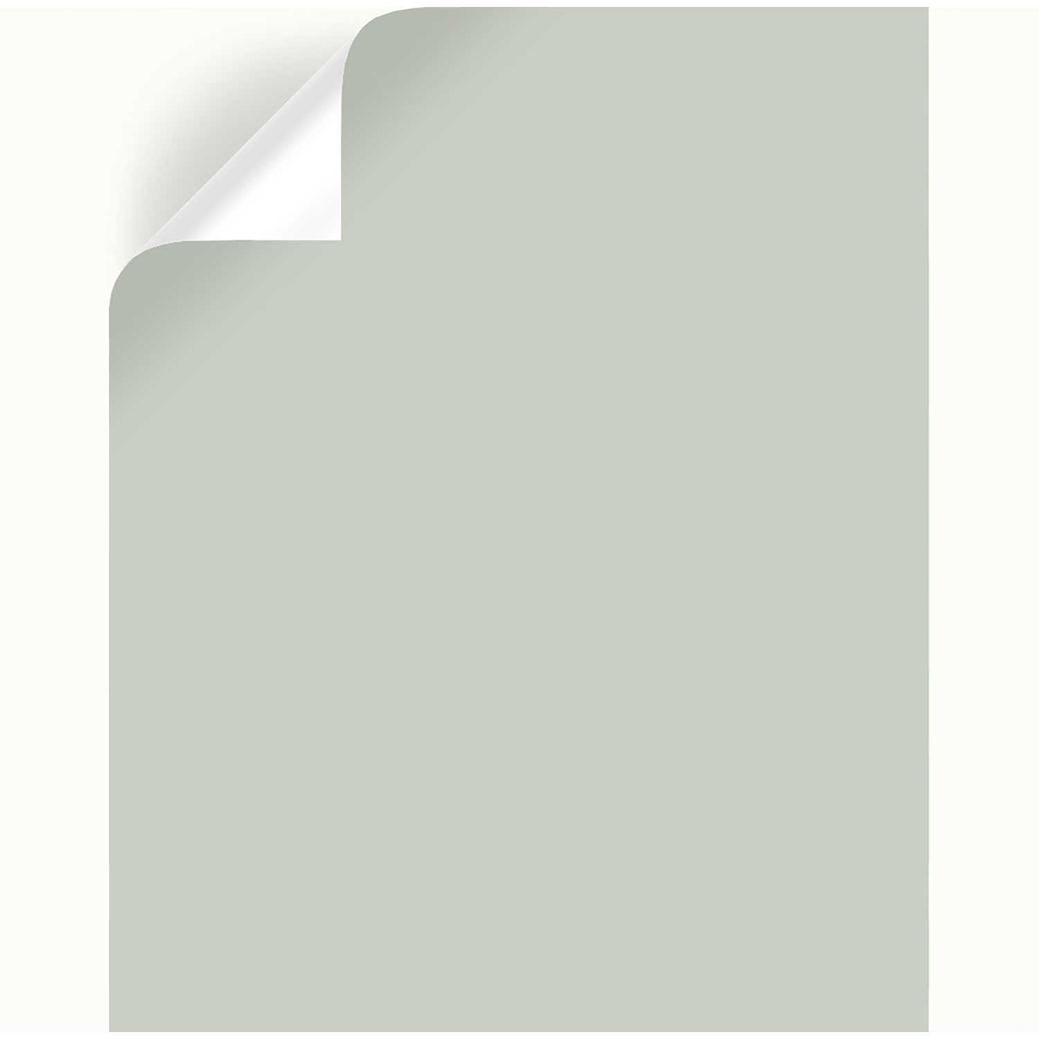 Magnolia Home by Joanna Gaines  Emmie's Room  Peel & Stick Color Sample