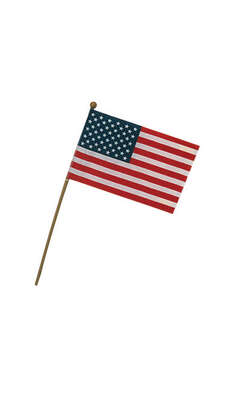 Valley Forge  American  Flag  4 in. H x 6 in. W