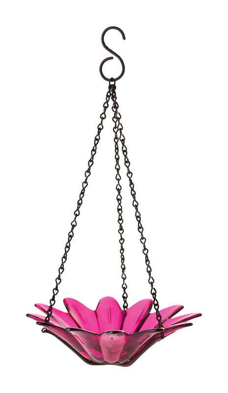 Couronne  Fuchsia  Wild Bird  10.1  Glass  Hanging Bowl  Bird Feeder  1 ports