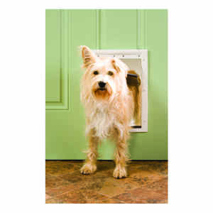 Petsafe  11.75 in. W x 8.125 in. H Door and Gate  Plastic