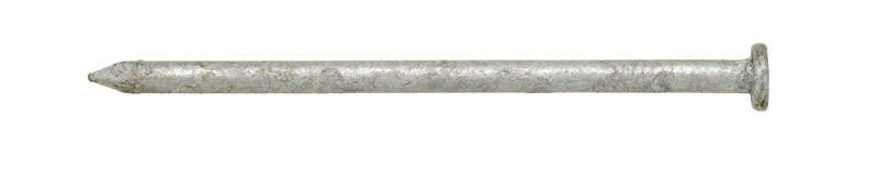 Ace  12D  3-1/4 in. L Common  Steel  Nail  Flat Head Smooth Shank  1  5 lb.