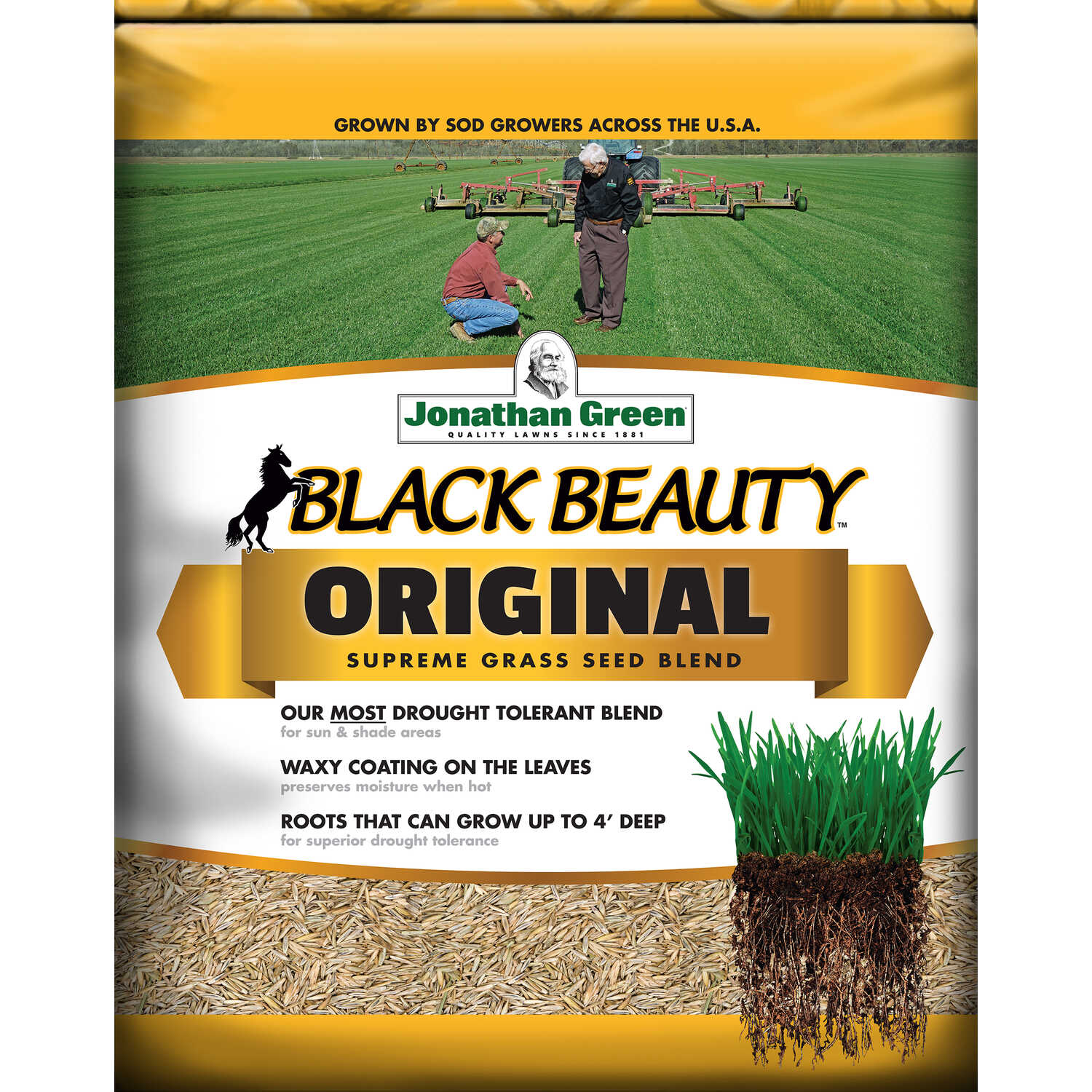Jonathan Green  Black Beauty Original  Tall Fescue  Grass Seed  5 lb.