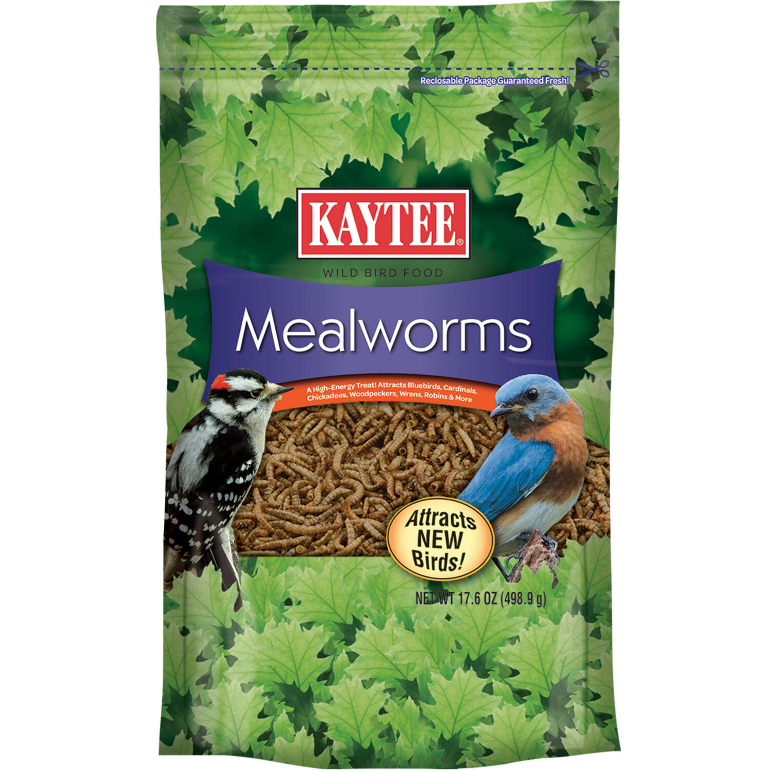 Kaytee Mealworms Songbird Dried Mealworm Mealworms 17.6 oz.