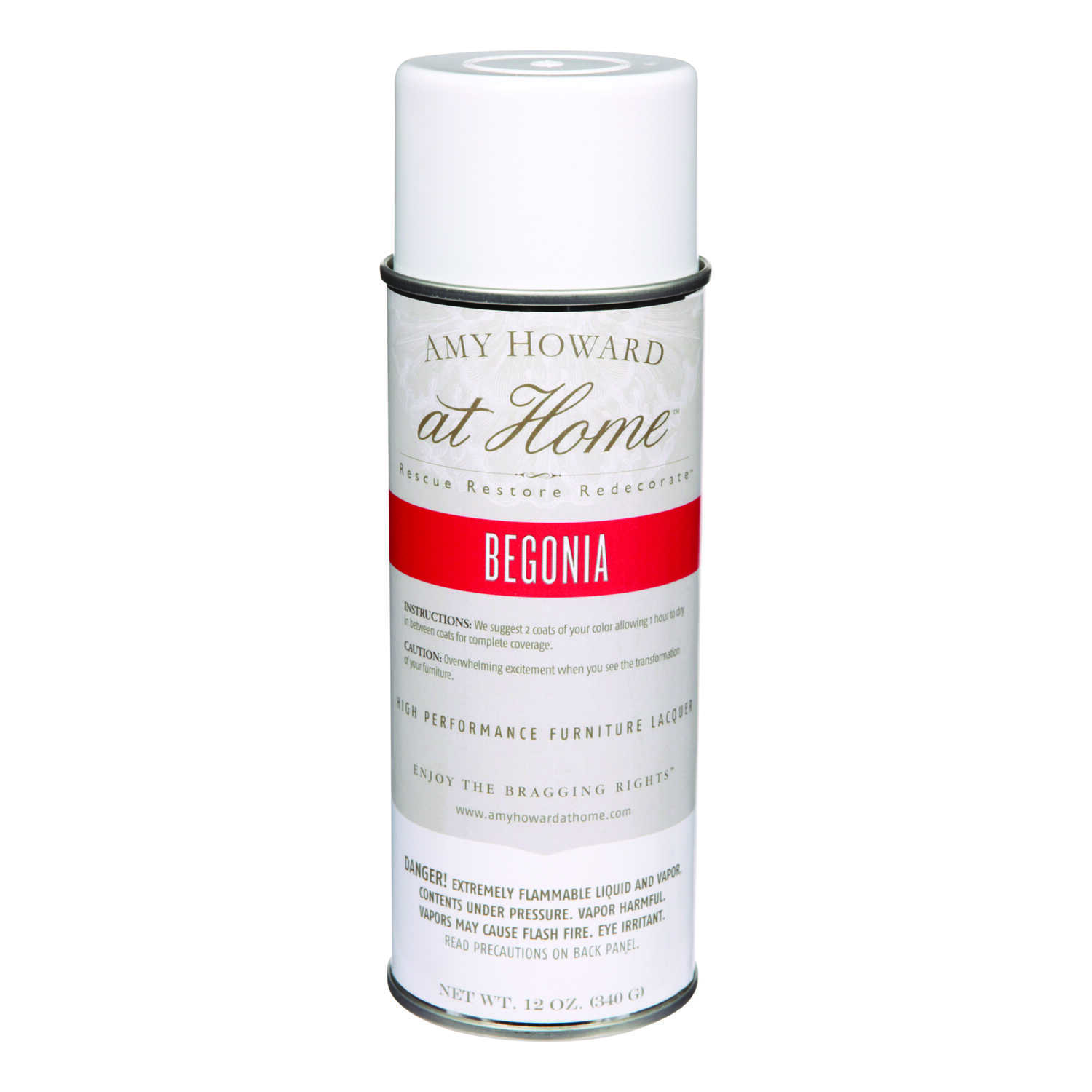 Amy Howard at Home  Gloss  High Performance Furniture Lacquer Spray  12 oz. Begonia